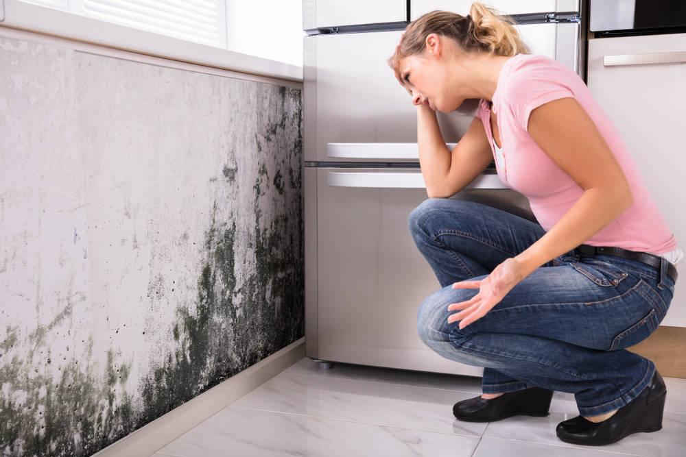 ¿Problemas de humedad en casa?