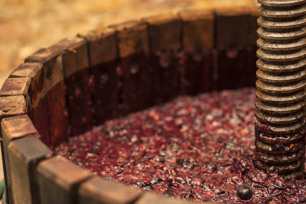 La innovación en el mundo del vino